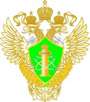 Ростехнадзор предлагает приостановить эксплуатацию кранов марки КБ-473