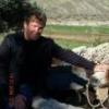 Косозубые шестерни в инвенторе - последнее сообщение от Glaive