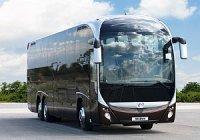 В России станет больше автобусов Iveco