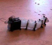 В США работают над созданием робота-змеи