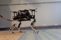 Робот-кошка разработана в Швейцарии