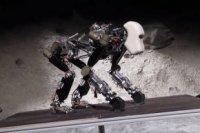Инженеры из Германии работают над роботом-гориллой