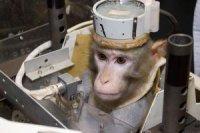 Иран продолжит программу космических запусков