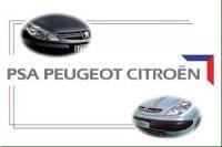 Некоторые модели PSA Peugeot Citroen будут поставлять из Белоруссии и Казахстана в Россию