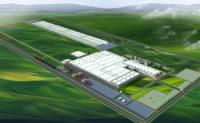 Проект завода Great Wall в Тульской области разработают голландцы