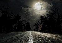 Автомобили Ford научились распознавать пешеходов в темноте