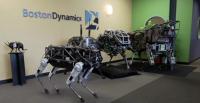 Японская компания SoftBank планирует приобрести производителя робототехники Boston Dynamics