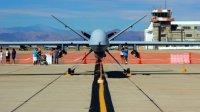 США готовы поставить Индии беспилотники Sea Guardian