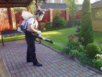Нюансы выбора опрыскивателя для дачи и сада